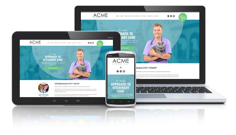 Colorful Website Design for Veterinarians