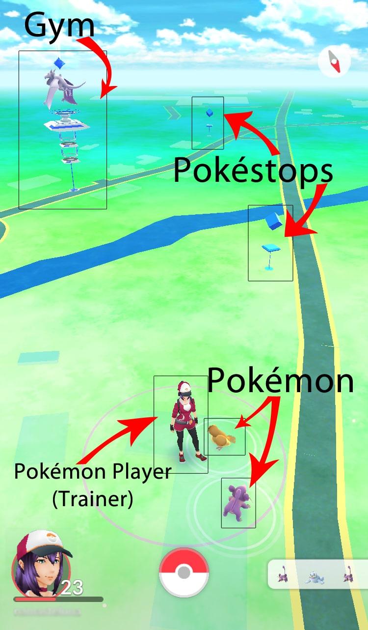 Chiropractic Pokemon Marketing - Pokemon Basics