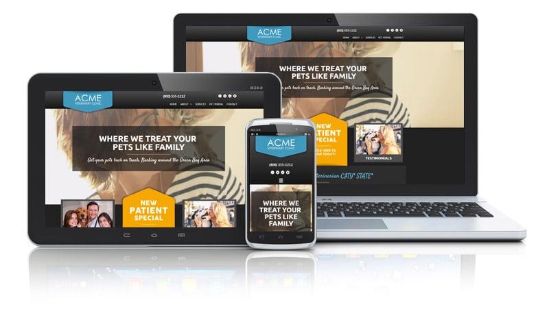Video Background on Veterinarian Web Design