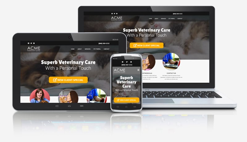 Website Design with Video for Veterinarians