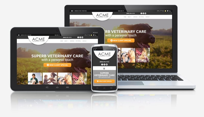 Vet Website with Video