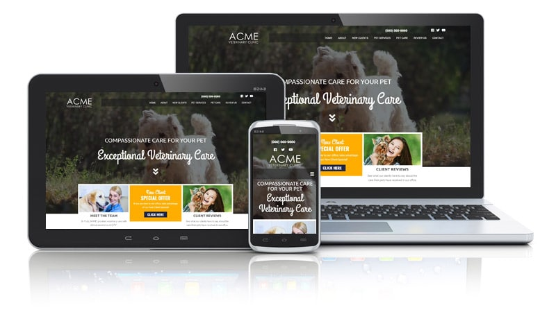 Web Design for Veterinarian with Video